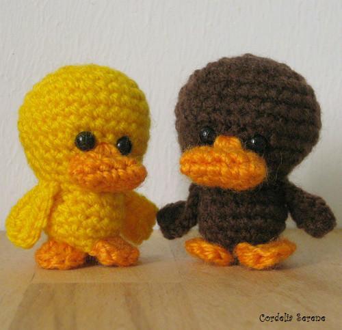 ducks011.jpg