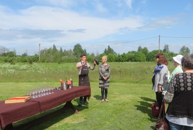Saaremaa%20b%20-viinitila.jpg