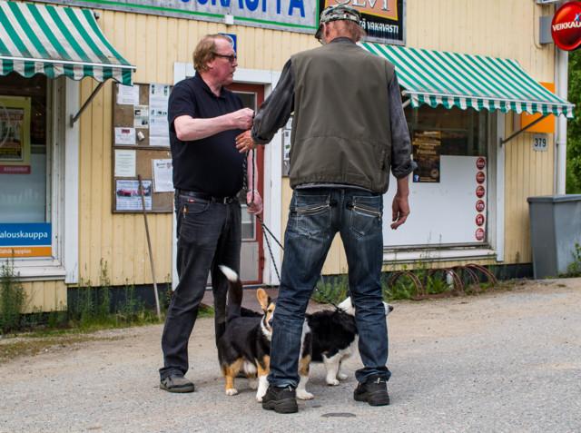 Runnilla-3.jpg