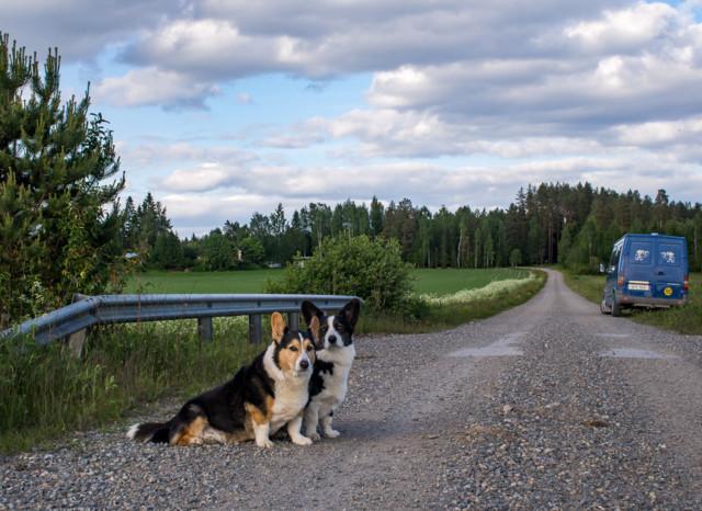 Runnilla-9.jpg