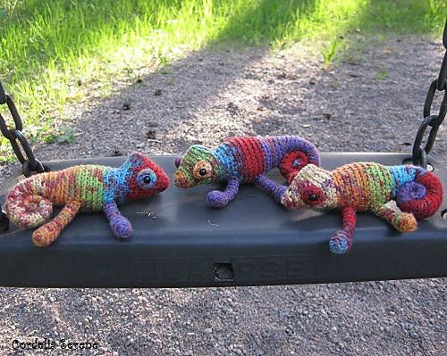 chameleons027_medium.jpg