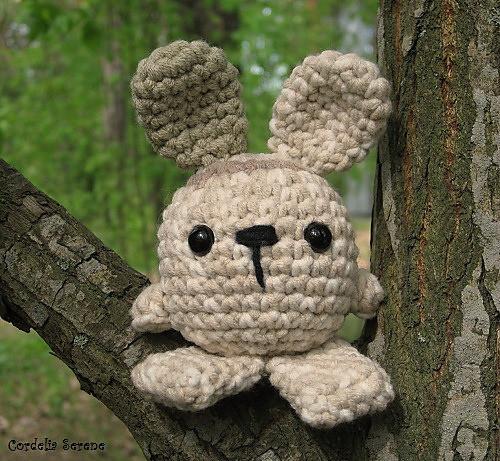 bunny035_medium.jpg
