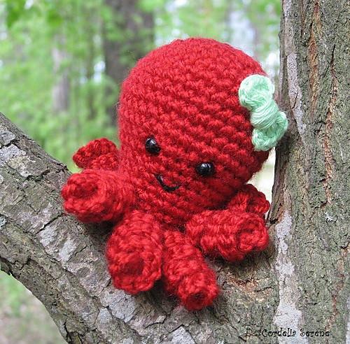 octopus034_medium.jpg