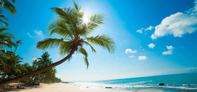 Beach-Tours3.jpg