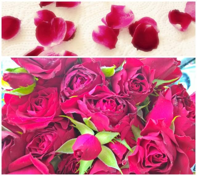 ruusu.jpg