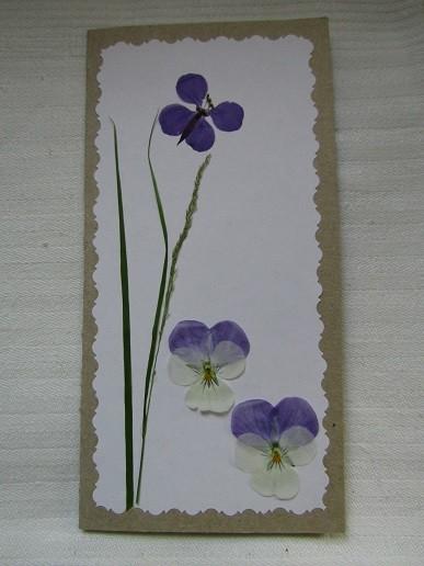 kukkakortti.jpg