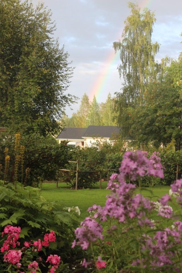 sateenkari1.jpg
