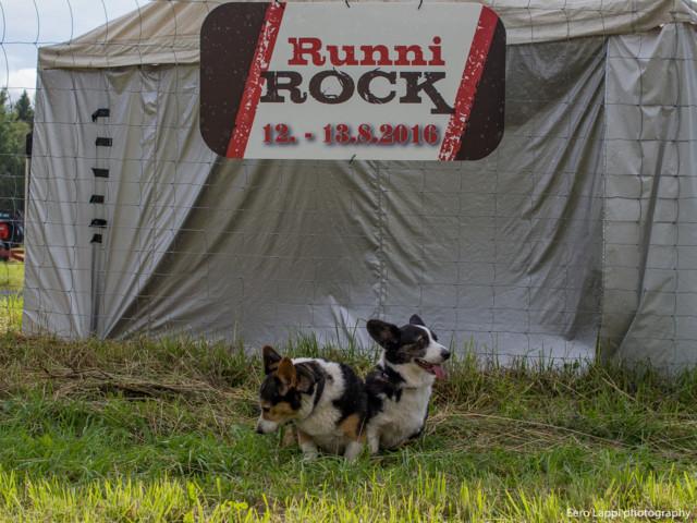 RunniRock%20Villisika-6.jpg