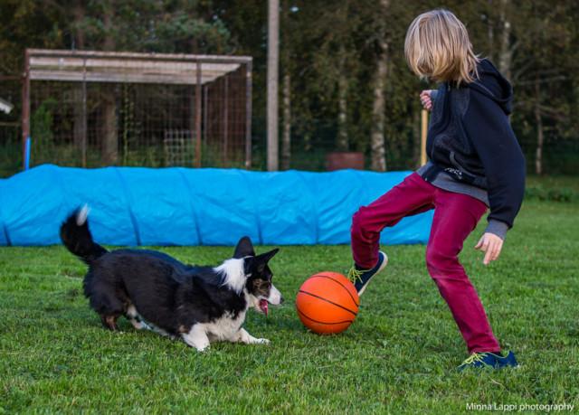 pallo-ottelu-3.jpg