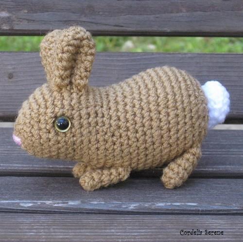 bunny8963.jpg