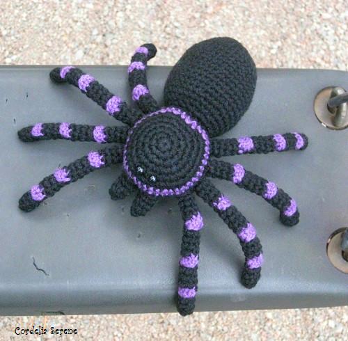spider9001.jpg
