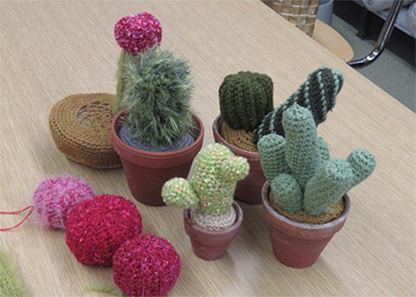 kaktukset.jpg