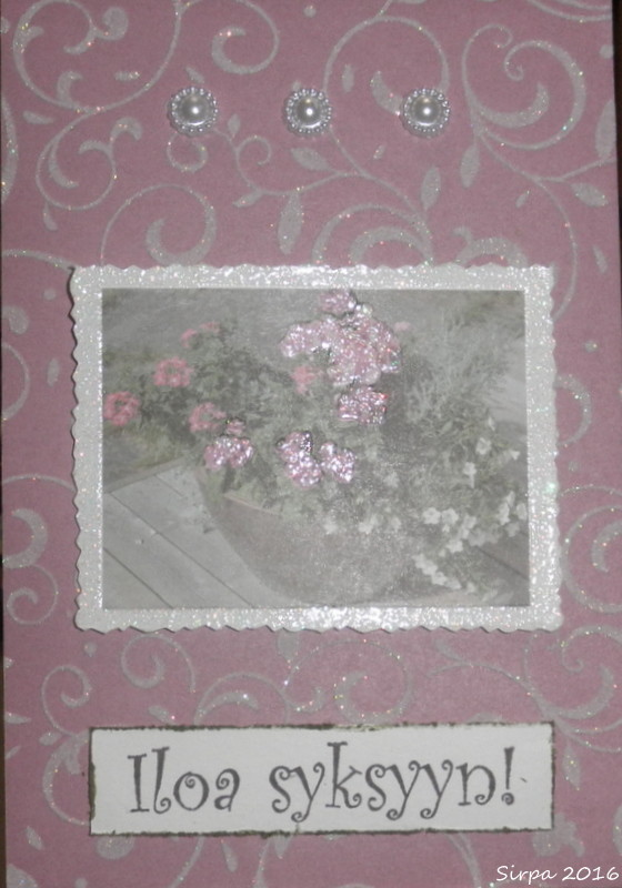 P8280106.jpg