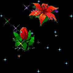 Kukkamaljakko.jpg