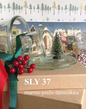 SLY37%20.jpg
