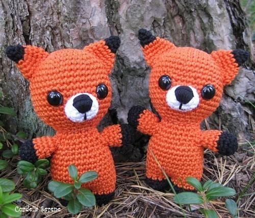 fox9219.jpg