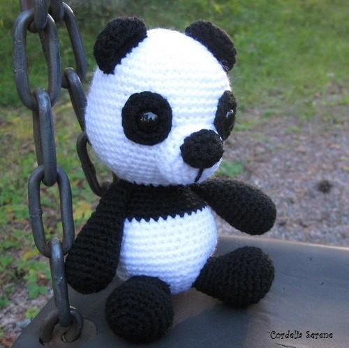 panda9171.jpg