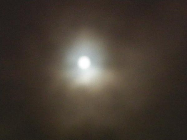 kuu2.jpg