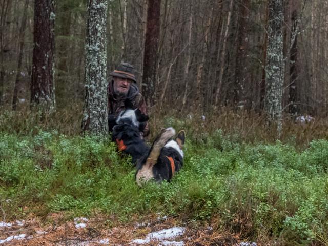Rottweiler-13.jpg