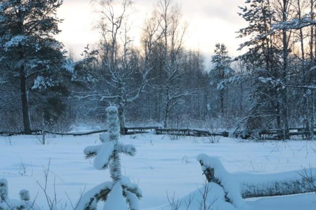 Luminen%20maa.jpg