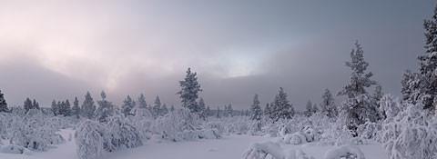 Saariselka_Panorama6.jpg