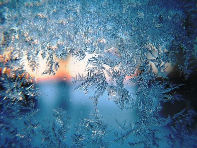 frost-633826_960_720.jpg