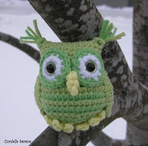 owl9632.jpg