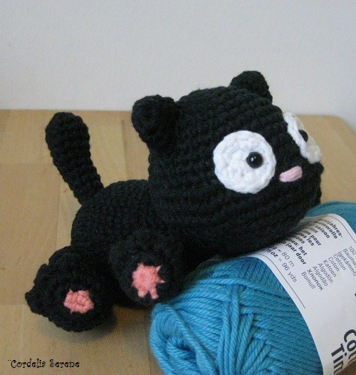 cat9766.jpg