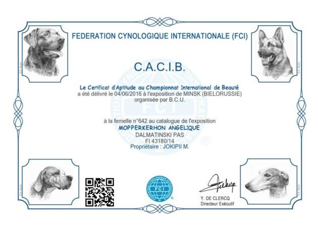 D1%20CACIB%204.6.16.jpg