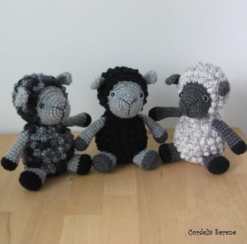 sheep9907.jpg