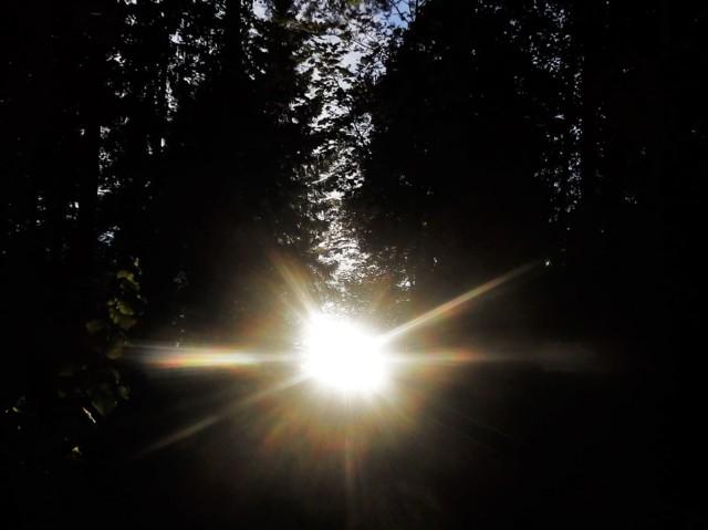 631%20Vasta-aurinko.jpg