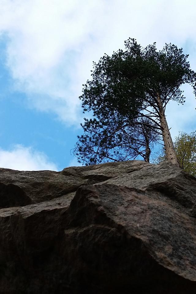 kallio.jpg