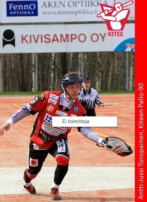 aj_toropainen_niilohirvonen.jpg