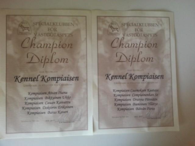 Champion%20Diplom%20SKV.jpg