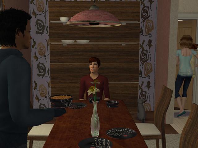 Sims2EP8%202013-05-05%2021-43-11-87122.j