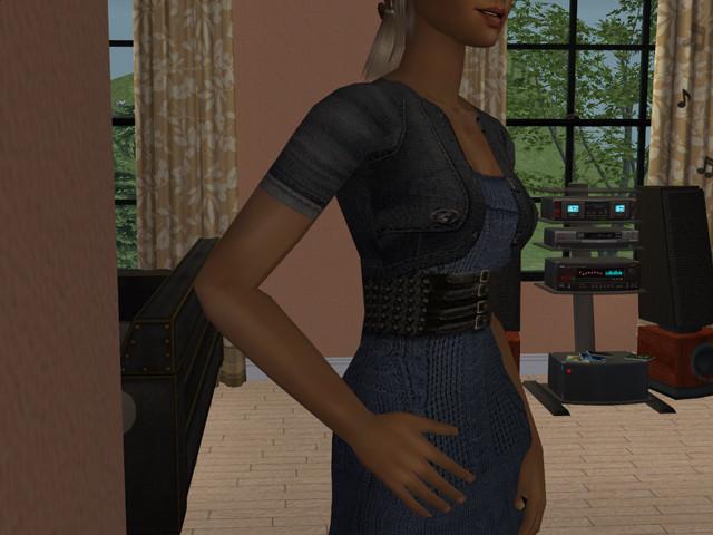 Sims2EP8%202013-07-14%2020-04-44-81203.j