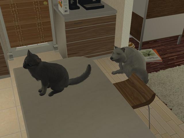 Sims2EP8%202016-08-14%2000-14-59-04.jpg?