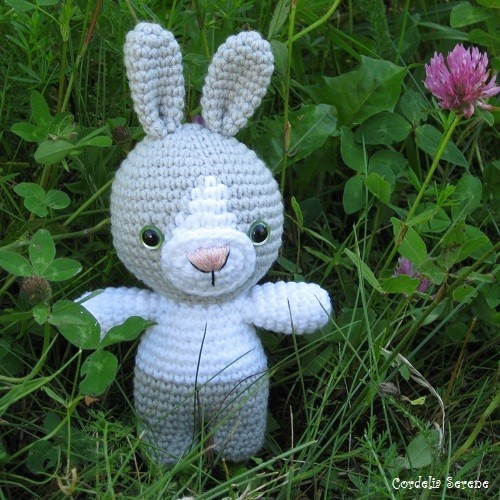 bunny0393.jpg
