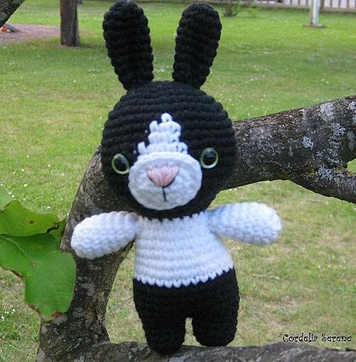 bunny0406.jpg
