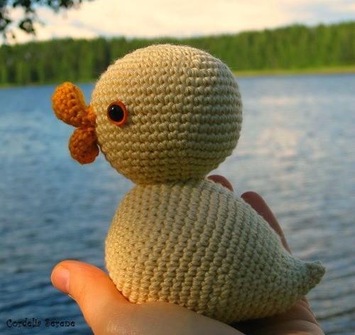 duckling0391.jpg
