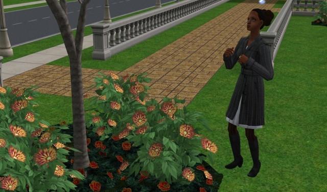 Sims2EP9%202017-09-10%2018-51-30-04.jpg
