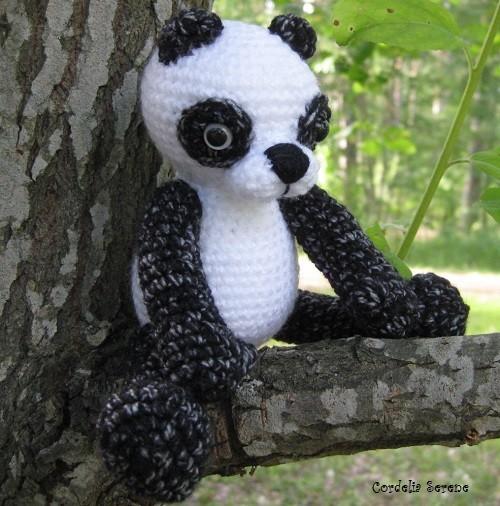 panda0511.jpg
