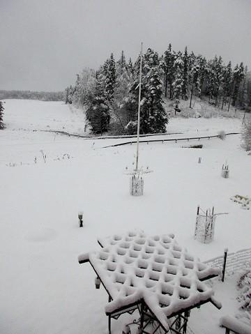 lumi3.jpg