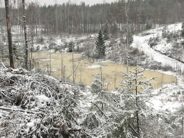 talvilampi.jpg