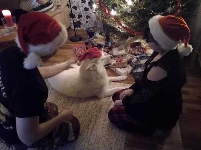 joulun viettoa