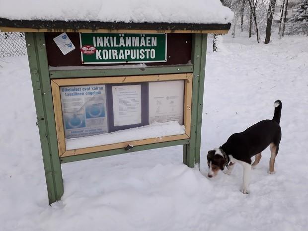 koirapuisto.jpg