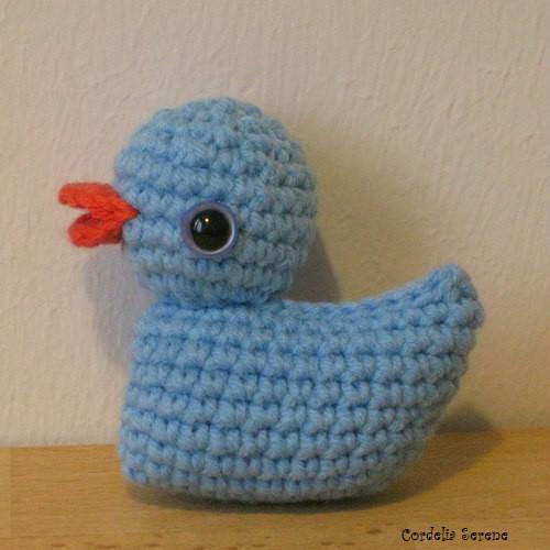 duck1093.jpg