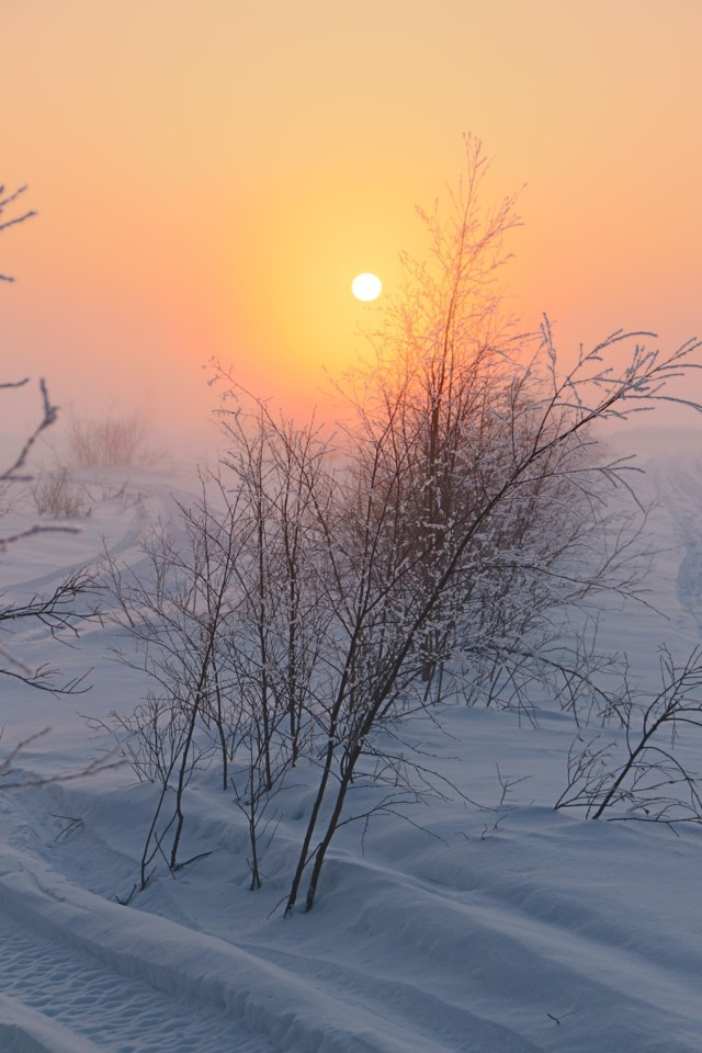 Ilta-aurinko180218.jpg