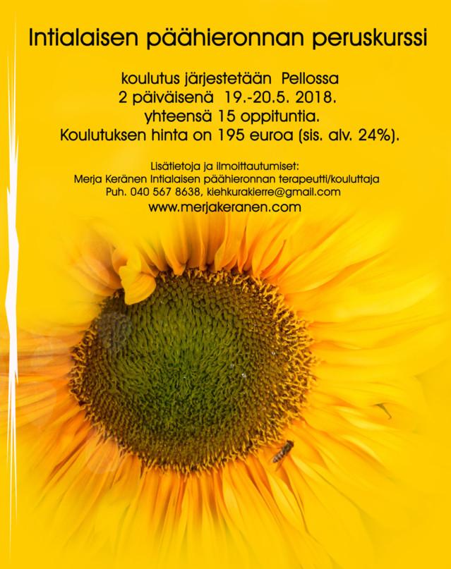 auringonkukkap%C3%A4%C3%A4hierontamainos
