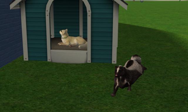 Sims2EP9%202018-03-15%2011-37-05-21.jpg
